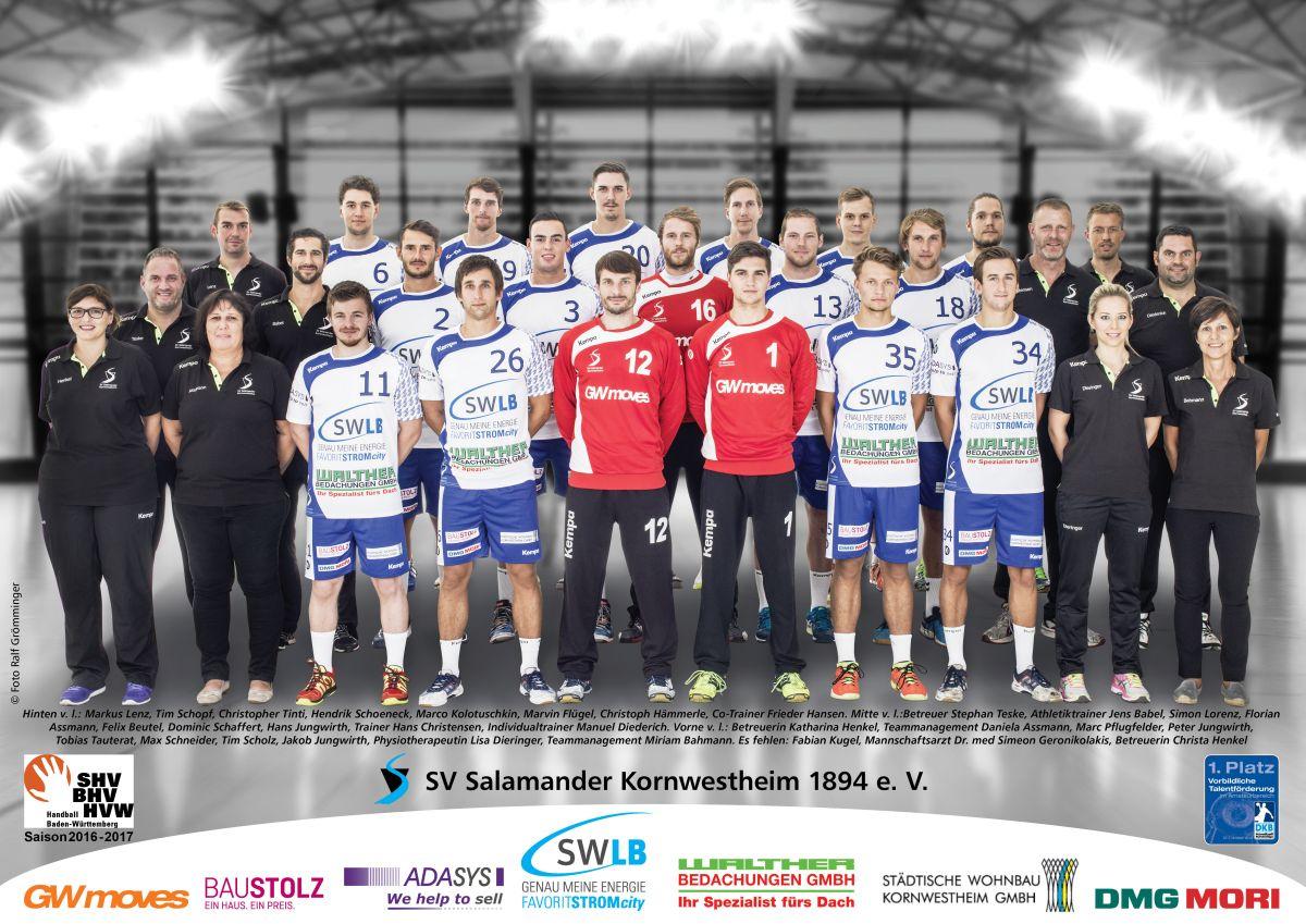 SVK Handball Männer 1
